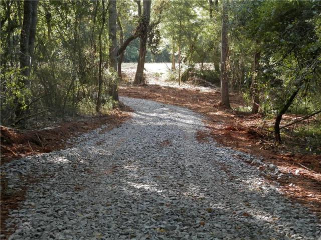 3673 Yellow Creek Road, Ball Ground, GA 30107 (MLS #6591076) :: The North Georgia Group