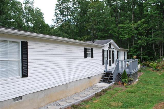 660 Shenandoah Drive, Dahlonega, GA 30533 (MLS #6592687) :: North Atlanta Home Team