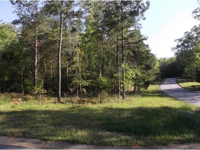 6403 Waterscape Ridge, Gainesville, GA 30506 (MLS #6599947) :: Iconic Living Real Estate Professionals