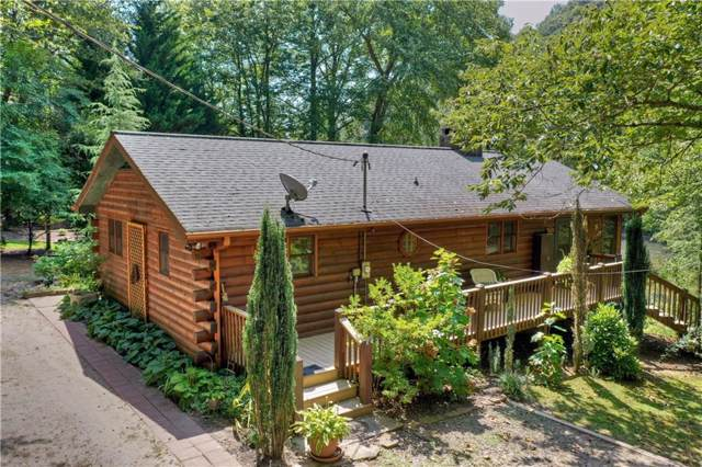207 Wildwood Trail, Mineral Bluff, GA 30559 (MLS #6608503) :: North Atlanta Home Team
