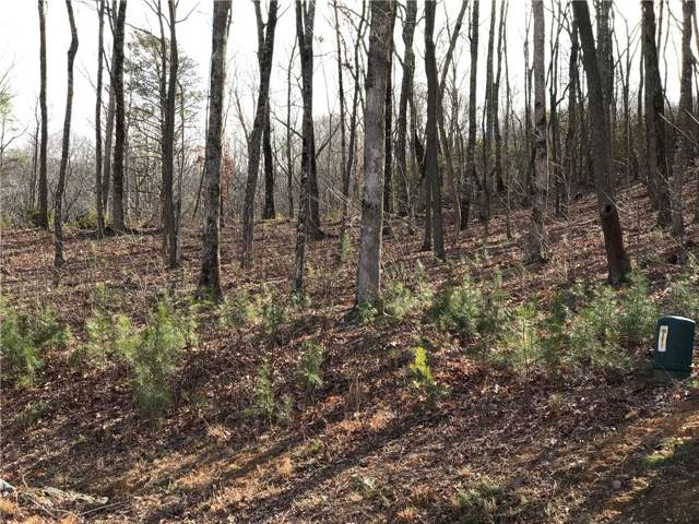Lot179 Trailwood Drive, Ellijay, GA 30536 (MLS #6616846) :: The Cowan Connection Team