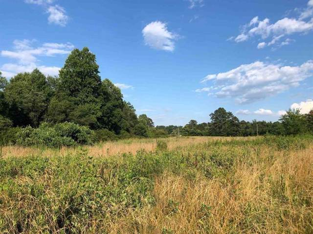 0 Highway 105, Demorest, GA 30535 (MLS #6617460) :: Path & Post Real Estate