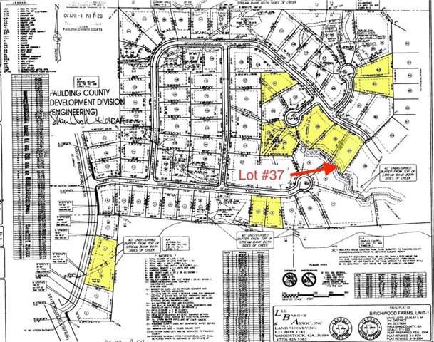 456 Birchwood Farms Lane, Dallas, GA 30132 (MLS #6621477) :: The Zac Team @ RE/MAX Metro Atlanta