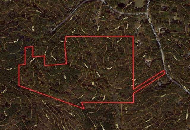 0 W Chapel Hill Road, Douglasville, GA 30135 (MLS #6623833) :: North Atlanta Home Team