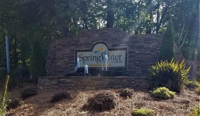 205 Springwater Chase, Newnan, GA 30265 (MLS #6627057) :: Todd Lemoine Team