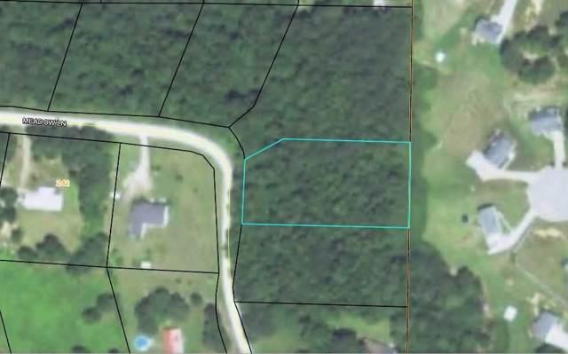 0 Meadow Lane, Temple, GA 30179 (MLS #6632343) :: Dillard and Company Realty Group
