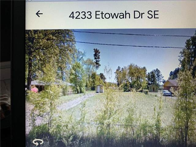 4233 Etowah Drive SE, Acworth, GA 30102 (MLS #6635898) :: Path & Post Real Estate