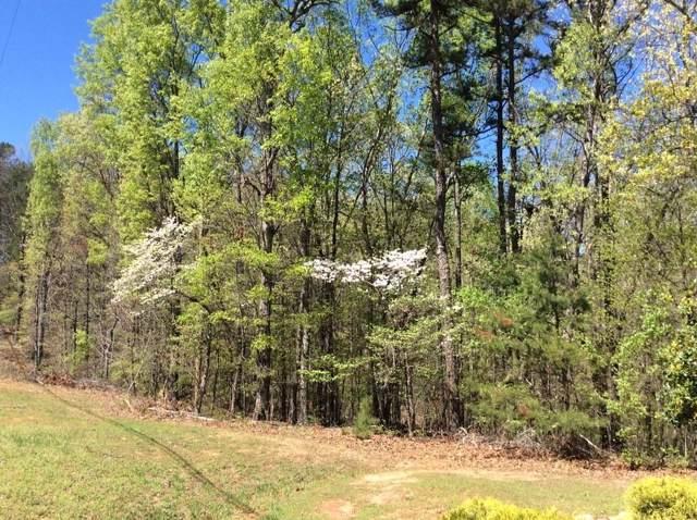 1 Twin Fawns Trail, Dahlonega, GA 30533 (MLS #6636378) :: Dillard and Company Realty Group