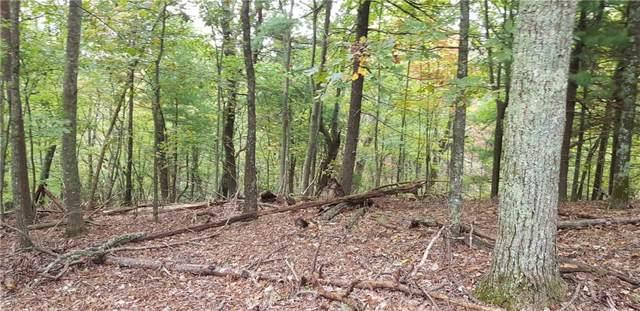 2058 Wood Fern Knoll, Big Canoe, GA 30143 (MLS #6636693) :: The North Georgia Group