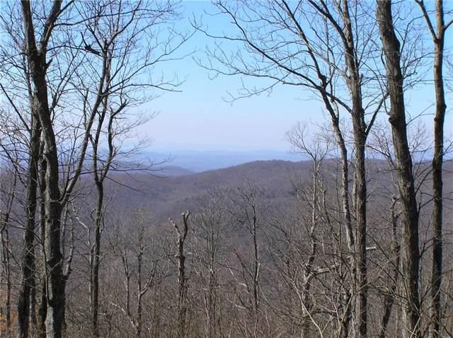 47 Mountain Springs Way, Jasper, GA 30143 (MLS #6638698) :: North Atlanta Home Team