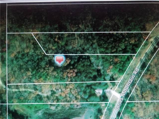 00 Jones Mountain Road, Talking Rock, GA 30175 (MLS #6643866) :: Path & Post Real Estate