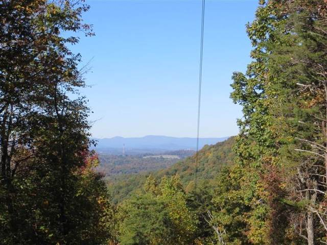 Lot 5 Deer Run Trail, White, GA 30564 (MLS #6644079) :: Charlie Ballard Real Estate