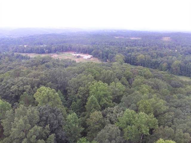 551 Cowart Mountain Trail, Waleska, GA 30183 (MLS #6645527) :: Maria Sims Group