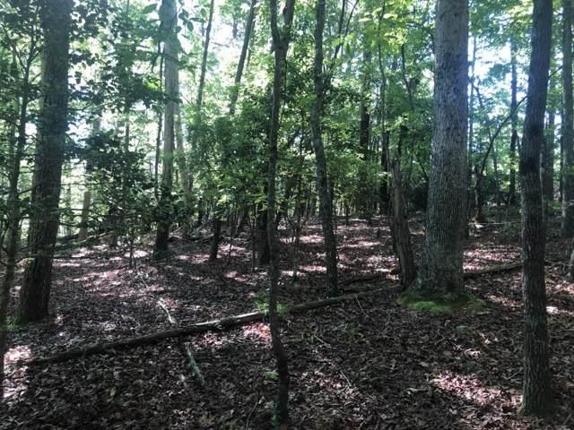 68 White Oak Trail, Dahlonega, GA 30533 (MLS #6651180) :: The North Georgia Group