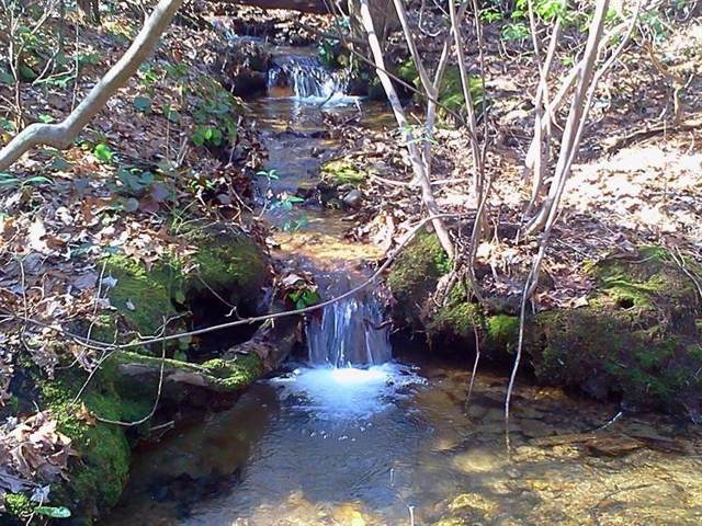 158 Coldstream Trail, Dawson, GA 30143 (MLS #6653737) :: Path & Post Real Estate