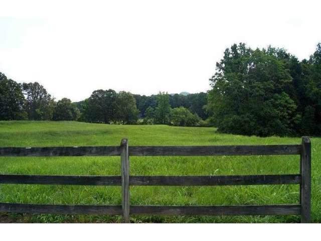 1661 Kenai Road, Kennesaw, GA 30152 (MLS #6654961) :: North Atlanta Home Team
