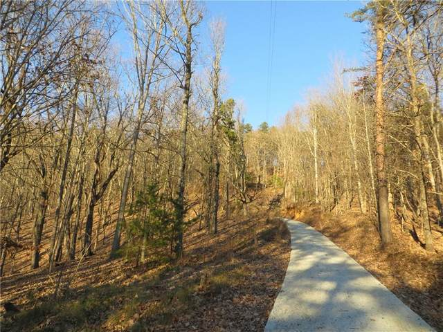 00 Deer Run Trail, White, GA 30564 (MLS #6663333) :: Todd Lemoine Team