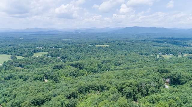 26 Long Mountain Trail, Cleveland, GA 30528 (MLS #6664828) :: North Atlanta Home Team