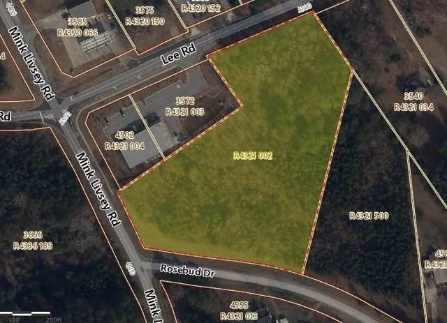 8.48AC Rosebud Drive, Snellville, GA 30039 (MLS #6668233) :: Vicki Dyer Real Estate