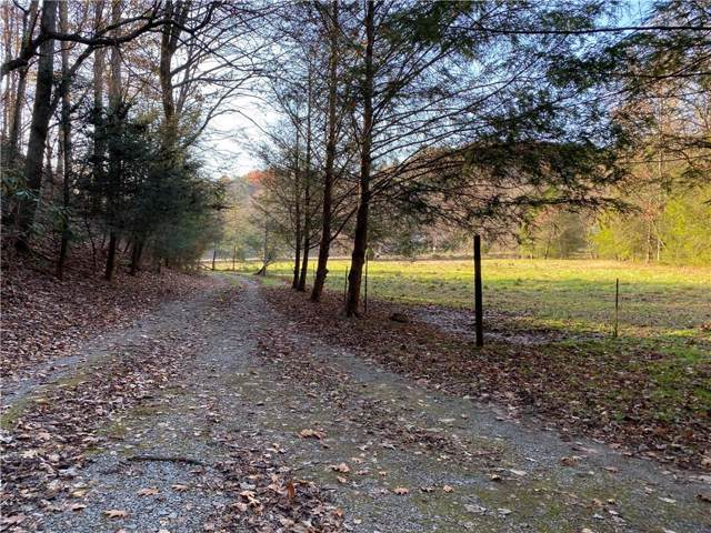 614 Pisgah Road, Ellijay, GA 30536 (MLS #6671650) :: Team RRP | Keller Knapp, Inc.