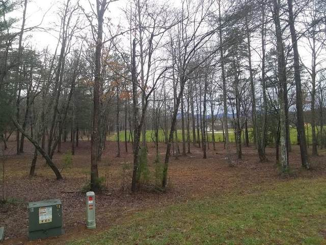 Lot 6 Lands End Boulevard, Blairsville, GA 30512 (MLS #6680490) :: The Heyl Group at Keller Williams