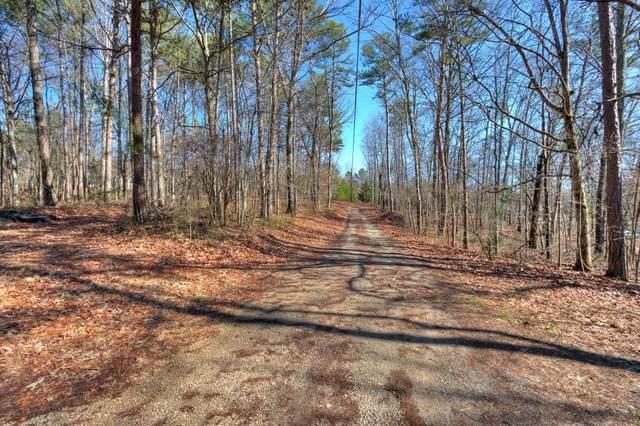 395 Hickory Nut Drive, Canton, GA 30114 (MLS #6685310) :: Charlie Ballard Real Estate