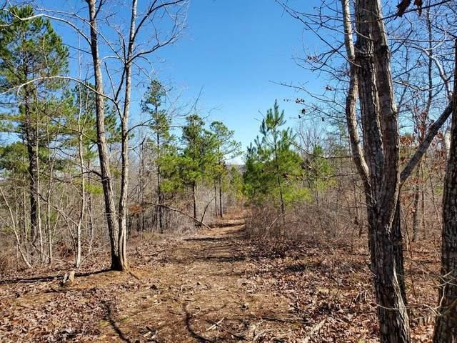 0 Hulseytown Road, Dallas, GA 30157 (MLS #6686308) :: Path & Post Real Estate
