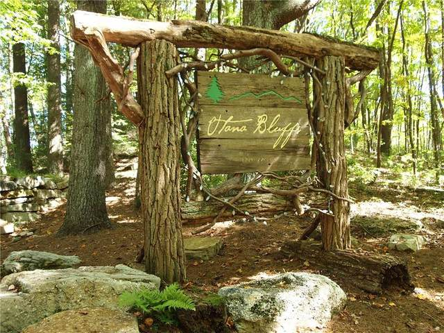 Lot 70 Utana Bluffs Trail, Ellijay, GA 30540 (MLS #6687076) :: The Heyl Group at Keller Williams
