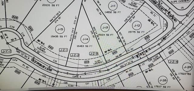 972 Old Forge Lane, Jefferson, GA 30549 (MLS #6699835) :: MyKB Partners, A Real Estate Knowledge Base