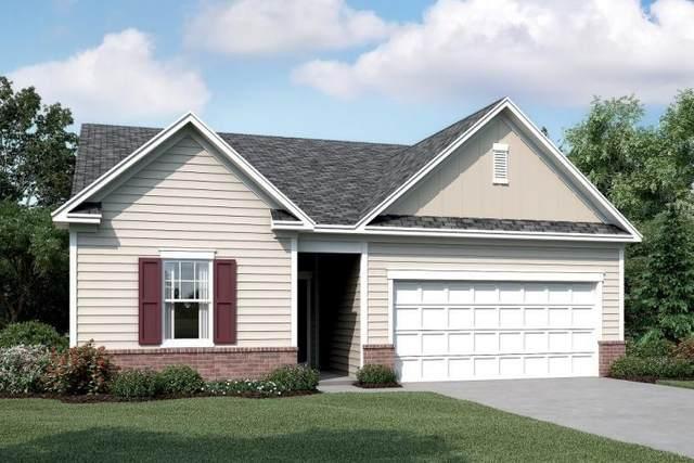 115 Sorrento Drive, Cartersville, GA 30120 (MLS #6702005) :: Kennesaw Life Real Estate
