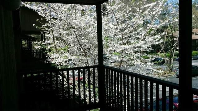 701 River Run Drive, Atlanta, GA 30350 (MLS #6702311) :: RE/MAX Paramount Properties