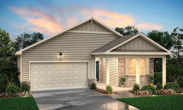500 Curry Ridge Court, Locust Grove, GA 30248 (MLS #6705988) :: Kennesaw Life Real Estate