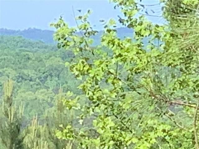 LOT 4 Pleasant Hill Road, Talking Rock, GA 30175 (MLS #6708098) :: Compass Georgia LLC