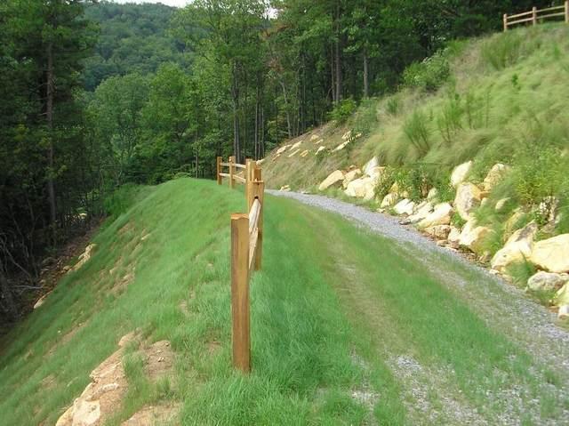 Lot 98 Sharp Mountain Parkway, Jasper, GA 30143 (MLS #6709499) :: Kennesaw Life Real Estate