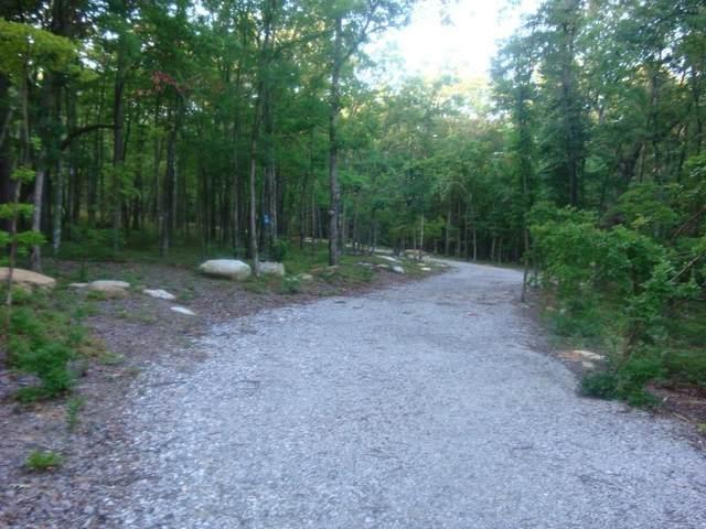 201 Mystic Trail, Jasper, GA 30143 (MLS #6709518) :: The Heyl Group at Keller Williams
