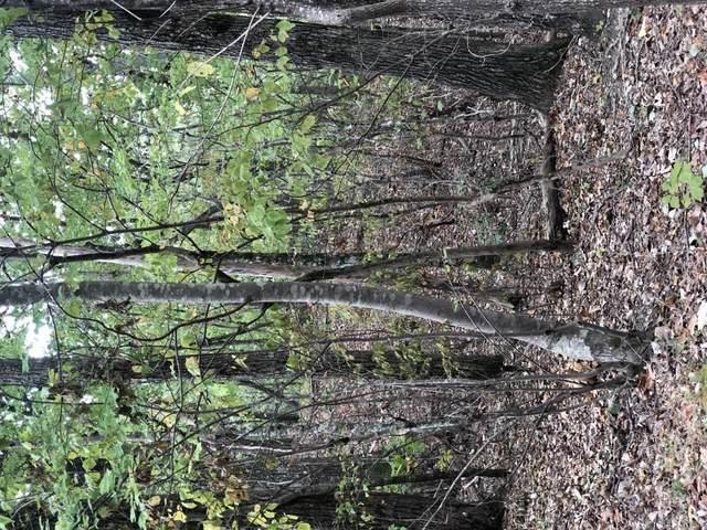0 Laurel View Drive, Jasper, GA 30143 (MLS #6713891) :: Todd Lemoine Team