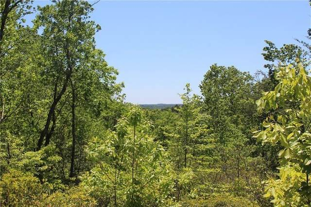 Lot 5 Owl Mountain Trail, Ellijay, GA 30536 (MLS #6722185) :: The Heyl Group at Keller Williams