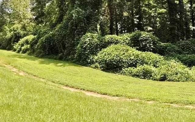 1176 County Line Road, Cumming, GA 30040 (MLS #6724401) :: North Atlanta Home Team