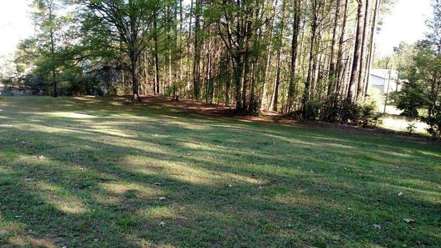 225 Martin Drive, Alapaha, GA 30004 (MLS #6729693) :: Path & Post Real Estate