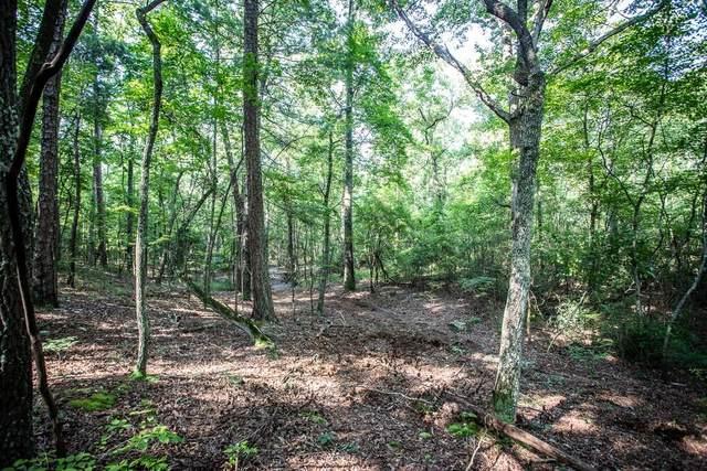 000 Euharlee Road SW, Cartersville, GA 30120 (MLS #6730530) :: Charlie Ballard Real Estate