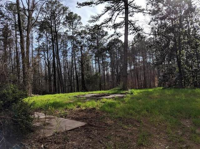 4389 Campbell Road, Snellville, GA 30039 (MLS #6731042) :: Kennesaw Life Real Estate