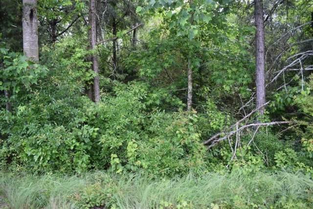 5715 Oscar Gilstrap Road, Clermont, GA 30527 (MLS #6731070) :: Lakeshore Real Estate Inc.