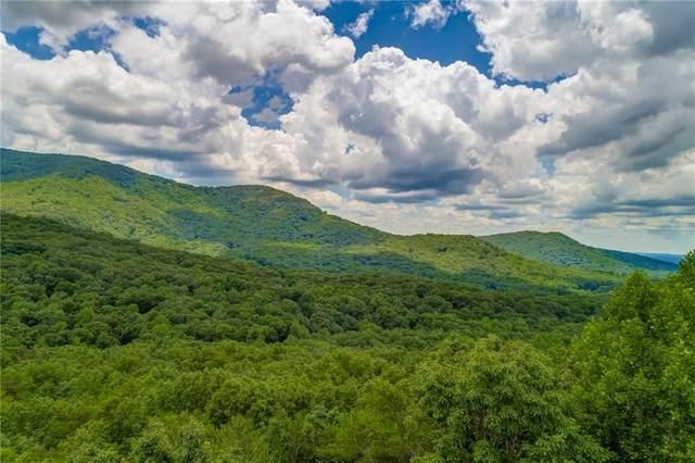 4430 Bee Tree Ridge Drive, Jasper, GA 30143 (MLS #6731310) :: Kennesaw Life Real Estate