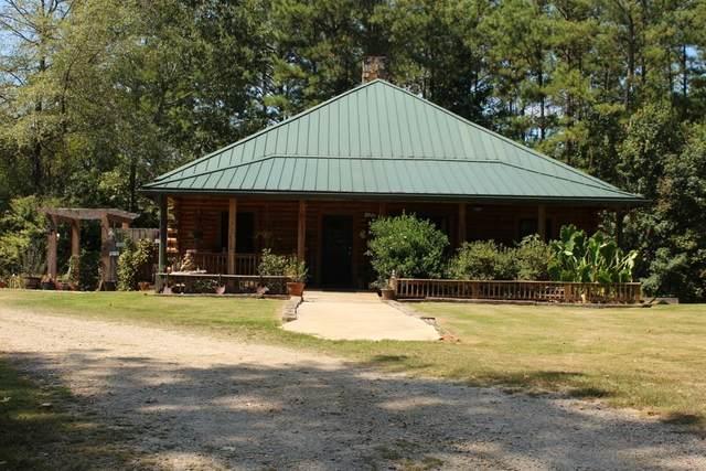 199 Sammy Duke Road, Whitesburg, GA 30185 (MLS #6731367) :: Thomas Ramon Realty