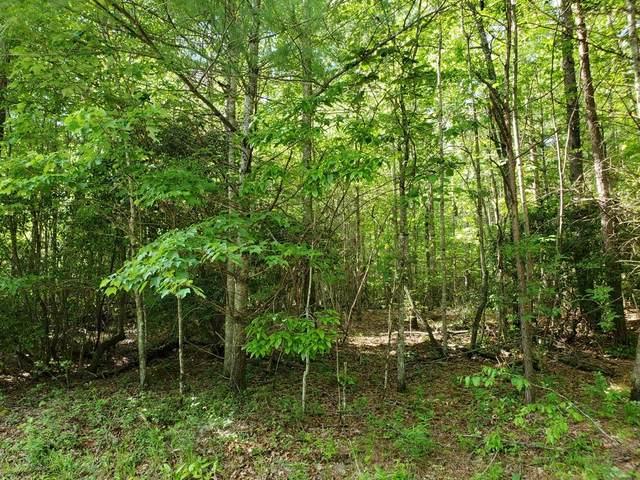 000 Tanner Cove Road, Blairsville, GA 30512 (MLS #6734046) :: Charlie Ballard Real Estate