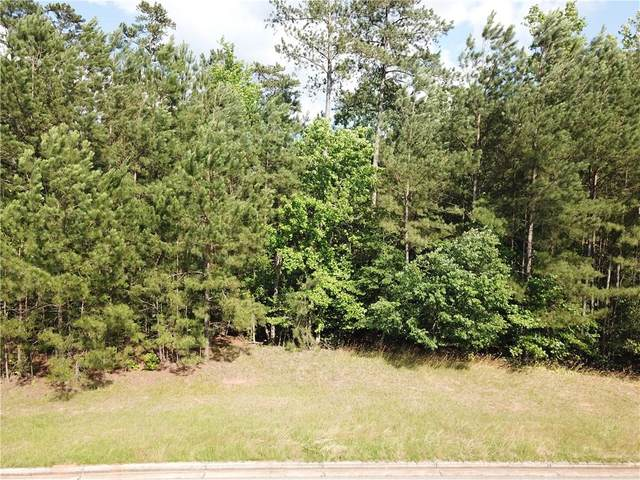 7300 River Walk Drive, Douglasville, GA 30135 (MLS #6737595) :: The Heyl Group at Keller Williams