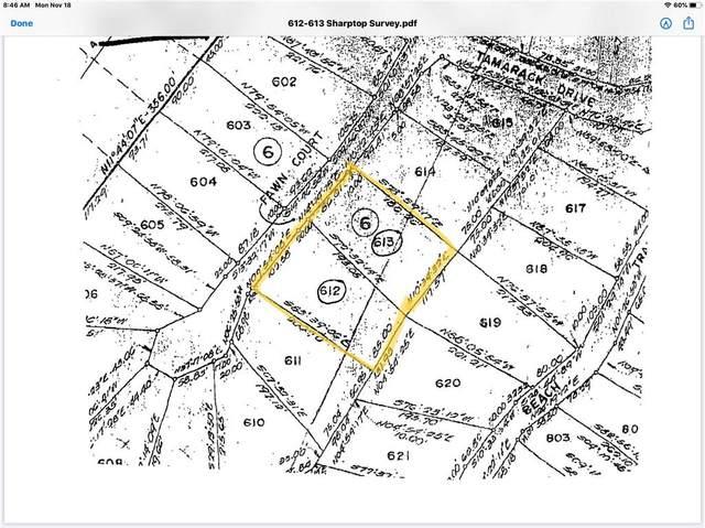 612 Fawn Court, Jasper, GA 30143 (MLS #6737612) :: Kennesaw Life Real Estate