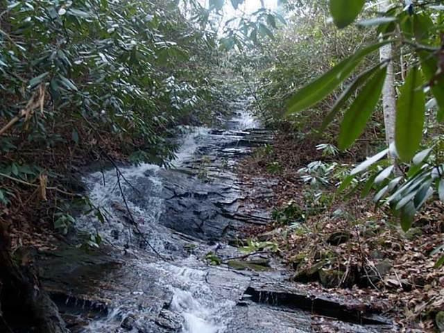 42 Huckleberry Cove Way, Jasper, GA 30143 (MLS #6739279) :: North Atlanta Home Team