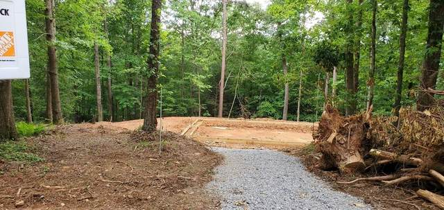 318 Elmwood Circle, Ellijay, GA 30540 (MLS #6743457) :: The Cowan Connection Team