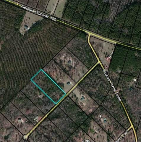 0 Eagle View Drive, Monticello, GA 31064 (MLS #6745286) :: Charlie Ballard Real Estate